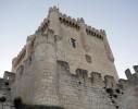Castillo-de-Penafiel