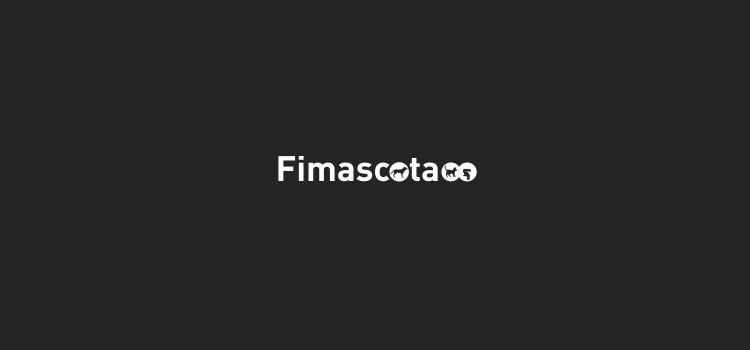 Fimascota celebra este fin de semana su décima edición