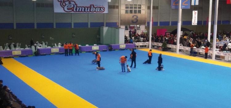 Concursos de presentadores juveniles e infantiles Ciudad de Valladolid, para niños y jóvenes