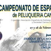 V Campeonato de España de Peluquería Canina los días 27 y 28 de febrero en Fimascota