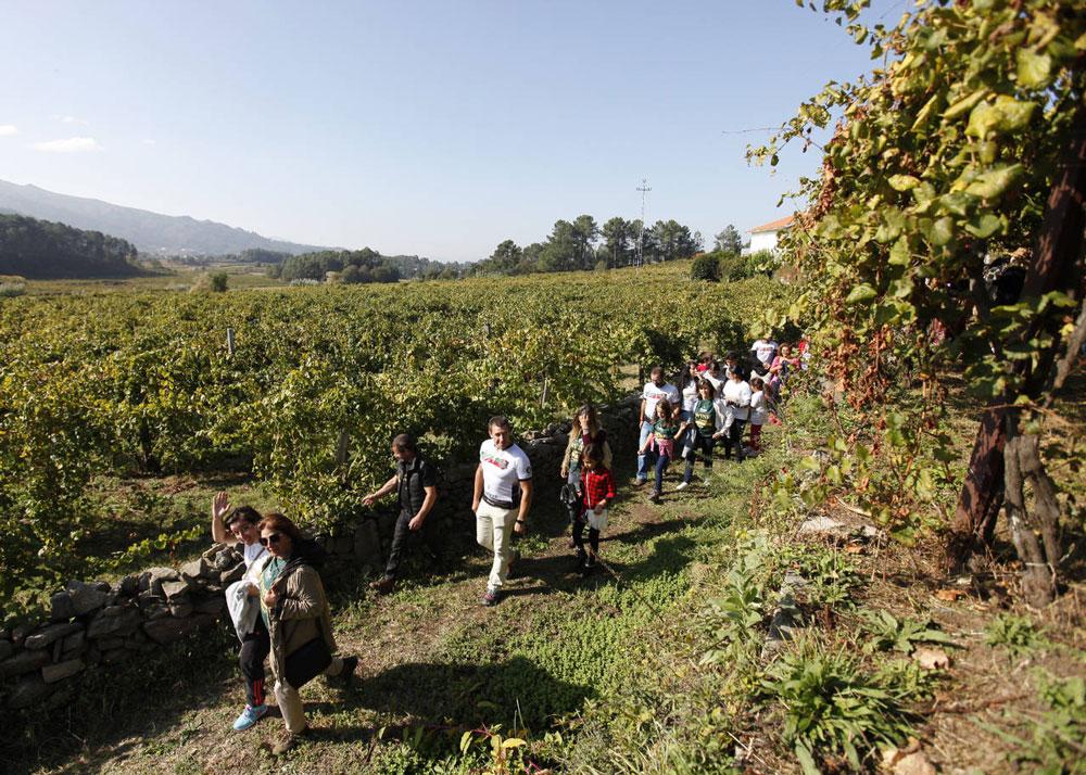 Soalheiro promocionará su enoturismo en FINE #Winetourismexpo bajo Viniportugal